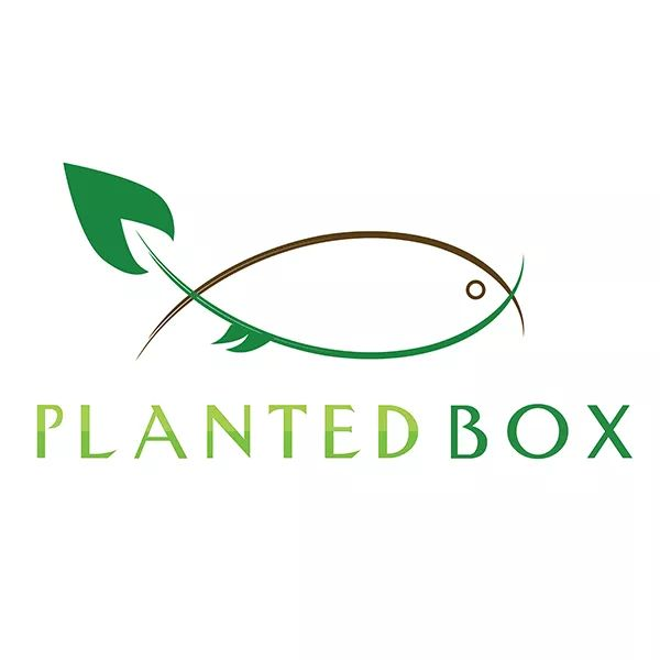 Planted Box