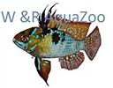 W en R Aqua Zoo